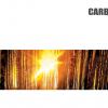 Catálogos Recuperadores CARBEL